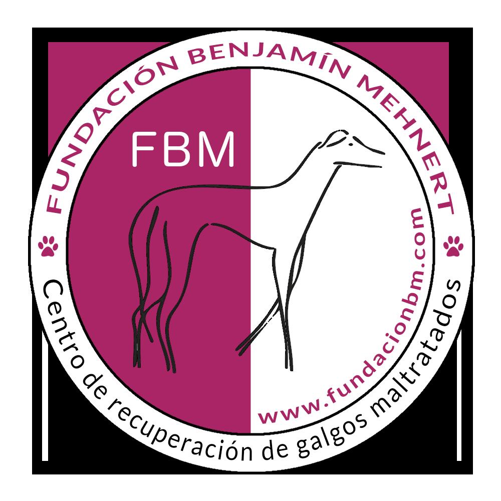 Fundación Benjamín Mehnert
